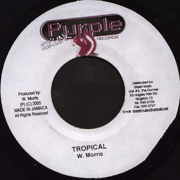 Wayne Marshall : I'd Truly Die   Single / 7inch / 45T     Dancehall / Nu-roots