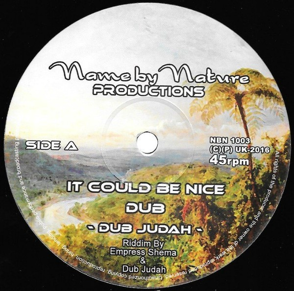 Dub Judah : It Could Be Nice | Maxi / 10inch / 12inch  |  UK