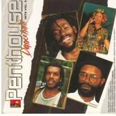 Various : Penthouse Dancehall Hits Vol. 9 | LP / 33T  |  Dancehall / Nu-roots
