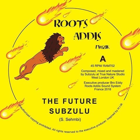 Subzulu : The Future