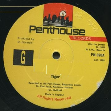 Tiger : Nah Skin Up | Maxi / 10inch / 12inch  |  Dancehall / Nu-roots
