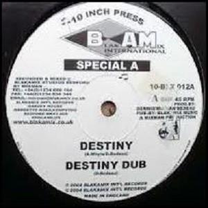 Special A : Destiny | Maxi / 10inch / 12inch  |  UK