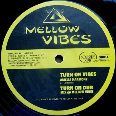 Amelia Harmony : Turn On Vibes | Maxi / 10inch / 12inch  |  UK