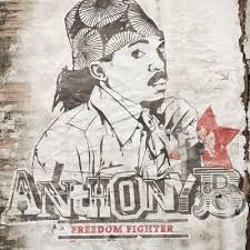 Anthony B : Freedom Fighter | LP / 33T  |  Dancehall / Nu-roots