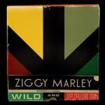Ziggy Marley : Wild And Free   CD     Dancehall / Nu-roots