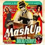 Various : Mash Up   CD     Mash Ups / Remixs