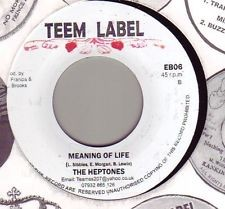The Heptones : Meaning Of Life | Single / 7inch / 45T  |  Dancehall / Nu-roots
