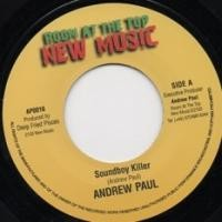 Andrew Paul : What A Gwan In A Babylon ( Radio Mix )   Single / 7inch / 45T     UK