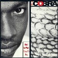 Mad Cobra : Hard To Wet Easy To Dry | LP / 33T  |  Oldies / Classics