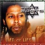 Tony Roots : Gift Of Life | LP / 33T  |  UK