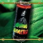 Jah Kingdom : Jah Kingdom Vol. 60 Divine Energy   CD     Dancehall / Nu-roots