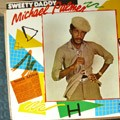Michael Palmer : Sweet Daddy | LP / 33T  |  Collectors