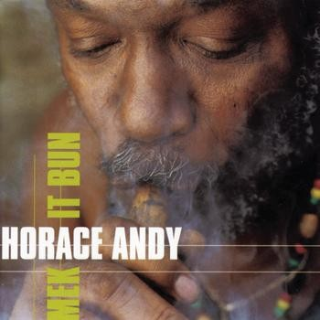 Horace Andy : Mek It Bun | LP / 33T  |  Dancehall / Nu-roots