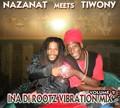 Nazanat Meets Tiwony : Vol 2 Ina Di Rootz Vibration Mix | CD  |  FR