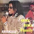 Half Pint : One Big Family | LP / 33T  |  Dancehall / Nu-roots