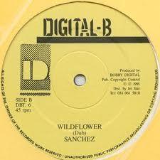 Sanchez : Wild Flower | Maxi / 10inch / 12inch  |  Collectors